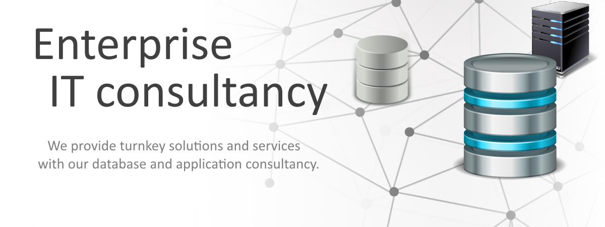 enterprise-it-consultancy